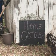 pinterest style pictures of a family on their farm in tx
