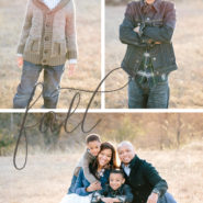 mini sessions in dallas area